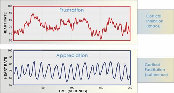 Heart rhythm patterns during different emotional states