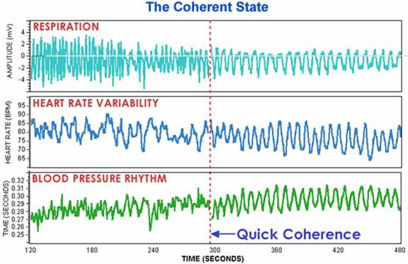 Physiological entrainment during coherence