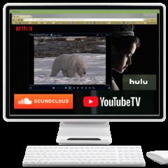 Applied NeuroScience Video Streamer