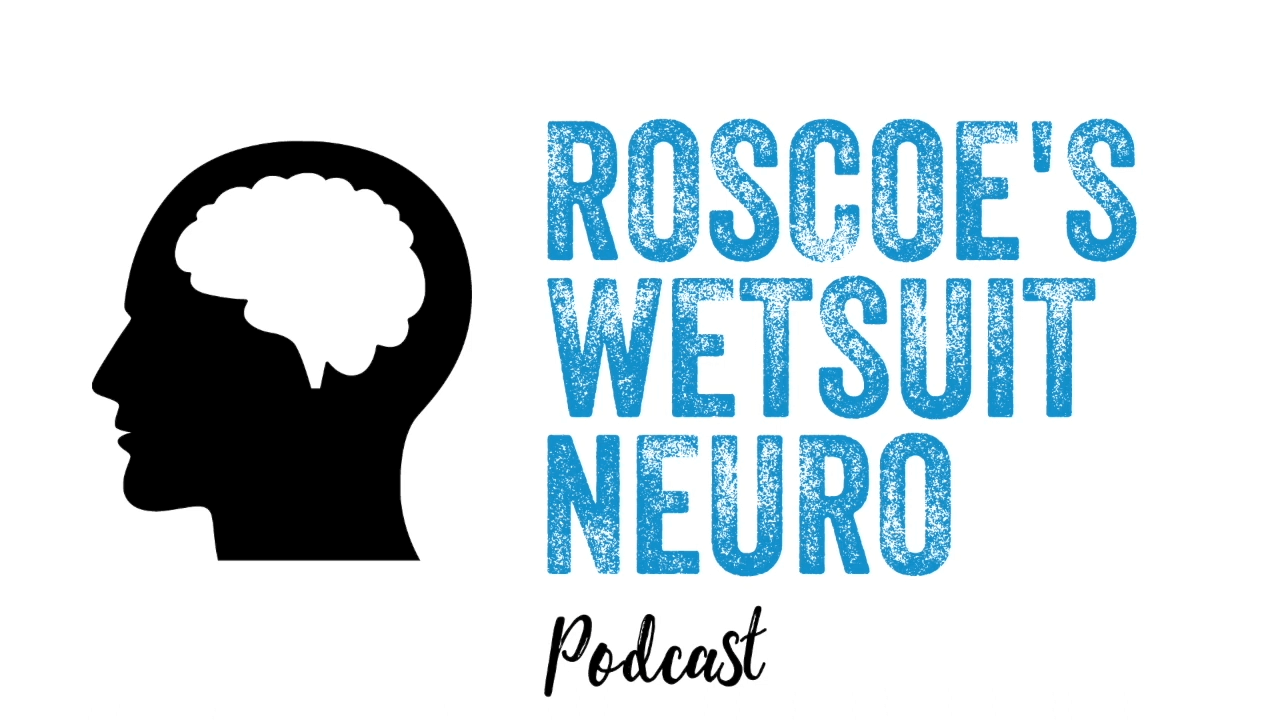 MindAlive's Dave Siever on Roscoe's Wetsuit Neuro Podcast